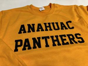 anahuac panthers